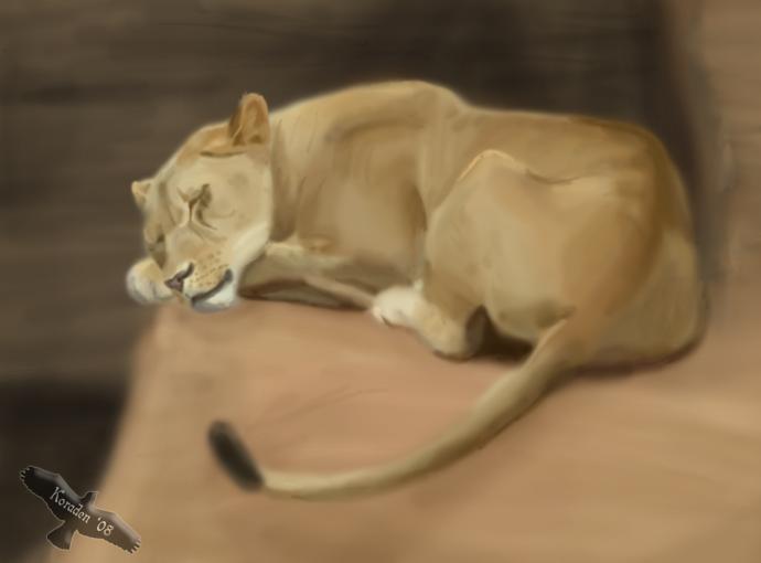 Koraden, para mi uno de los mejores artistas de tlk RealisticSleepingLioness