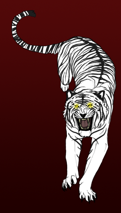 deformed white tiger pictures. of a white tiger :3