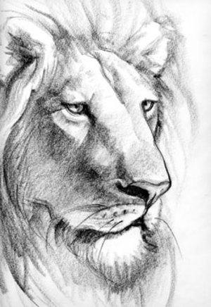 http://fanart.lionking.org/Artists/Yarkov/NarniaAslan.jpg